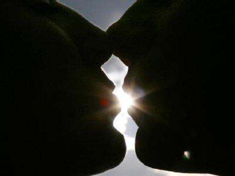 schicke dir einen kuss auf die wange
